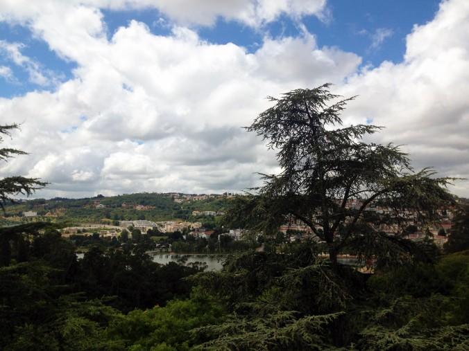 Coimbra Botanic garden